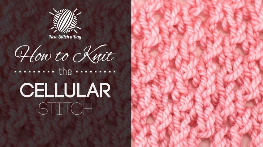 How to Knit the Cellular Stitch