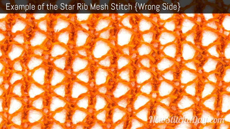 Example of the Star Rib Mesh Stitch. (Wrong Side)