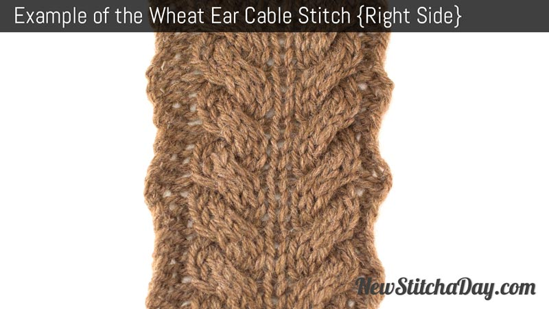 Example of the Wheat Ear Cable Stitch. (Right Side)